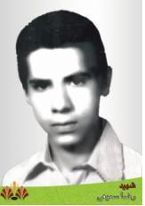 سمیعی-رضا