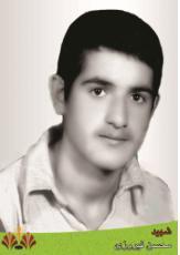 فیروزی-محسن