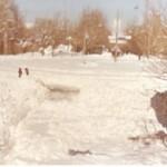 ارسال شده توسط آقای فروزش از آلبوم آقای غلامرضا لکی - فلکه سرچشمه